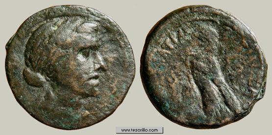 AE19 de Ptolomeo I. ΠTOΛEMAIOY. Chipre Cleopatra2